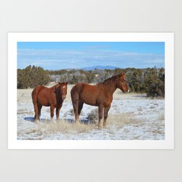 The Essence of New Mexico Art Print