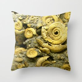 Fossils - Ammonite - Coiled Cephalopods  Throw Pillow