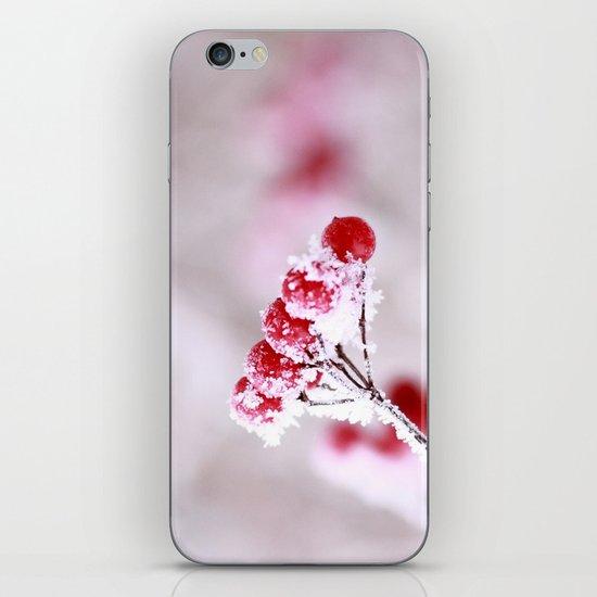 Red Berries Quadro iPhone & iPod Skin