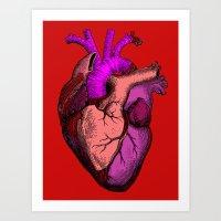 Valentine Anatomy Heart Art Print