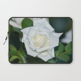 Canadian White Star Rose Laptop Sleeve