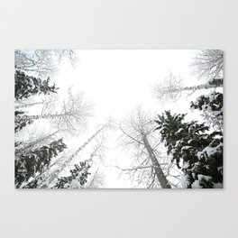 """""""Never cut a tree down in the wintertime"""" Canvas Print"""