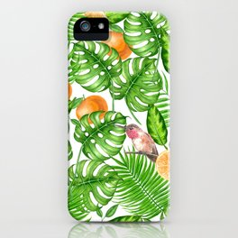 Tropical pattern, hummingbirds II iPhone Case