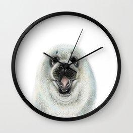 Adorable Seal Pup Wall Clock