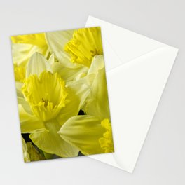 Simply Daffodils Stationery Cards