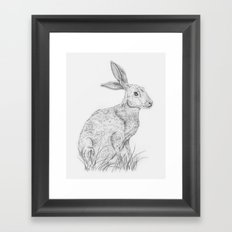 The Hare Framed Art Print