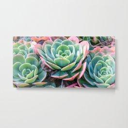 Succulent Garden Vibrant Pastel Metal Print