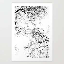 BLACK BRANCHES 2 Art Print
