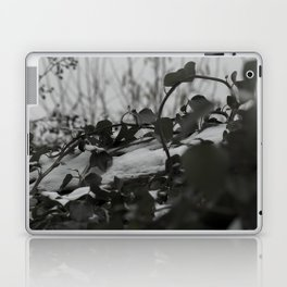 Snow covered ivy Laptop & iPad Skin