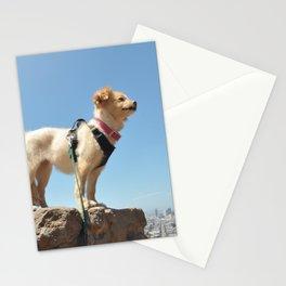 Wonder Dog in San Francisco Stationery Cards
