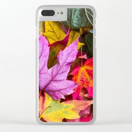 Indian Summer 4 Clear iPhone Case