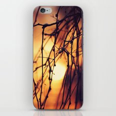 Promising light iPhone & iPod Skin