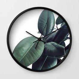 Ficus Elastica #13 #decor #art #society6 Wall Clock