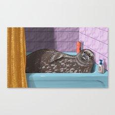 Domestic Seal Canvas Print