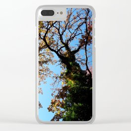 Rainbow Roots Clear iPhone Case