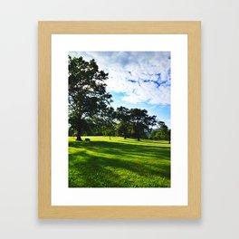 Washington D.C. Framed Art Print
