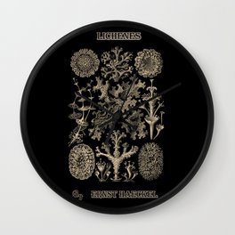 """Lichenes"" from ""Art Forms of Nature"" by Ernst Haeckel Wall Clock"