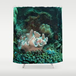 Light pink scorpionfish Shower Curtain