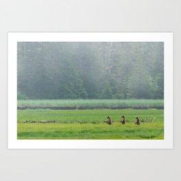 Looking for Goldilocks Art Print