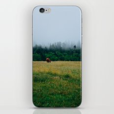 Morning Graze iPhone & iPod Skin