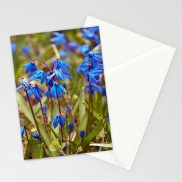 BLUE SOUND of SPRING Stationery Cards