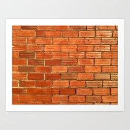Antique brick wall Art Print