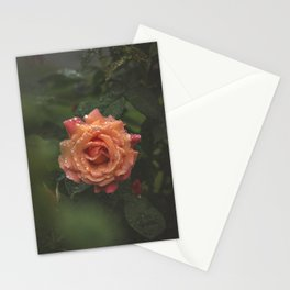 CenterPiece Stationery Cards