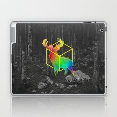 Catch The Reinbow Laptop & iPad Skin