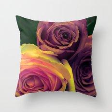 Vintage roses(10) Throw Pillow