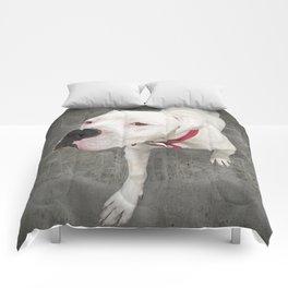 TSUKi (shelter pup) Comforters