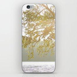Sunny tree iPhone Skin