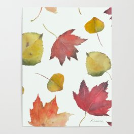 Autumn Leaves in Yellow, Red, and Orange Poster