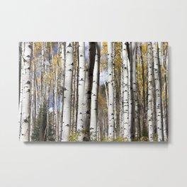 Wander in the Woods Metal Print