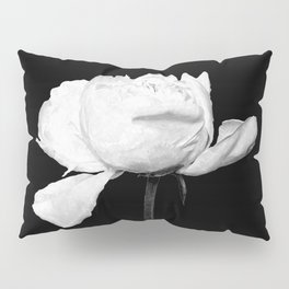 White Peony Black Background Pillow Sham