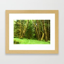 Lush Rain Forest Framed Art Print
