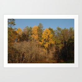 Fall on the Hill Art Print