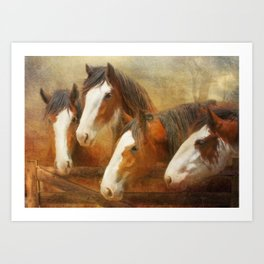 Faces Of Four Art Print