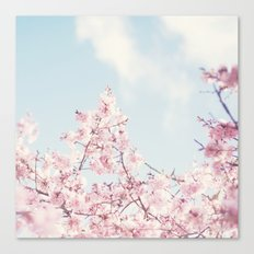 Spring melody Canvas Print