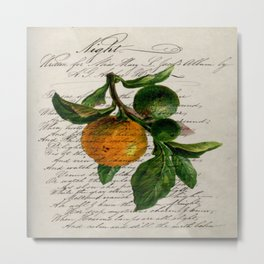 Shabby French botanical print tangerine clementine mandarin orange Metal Print