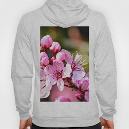 A sign of Spring. Hoody