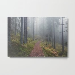 Norwegian Wood Metal Print