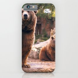 Spectecular Group Gracious Grizzly Bears Sitting In Habitat Waving At Camera Ultra HD iPhone Case