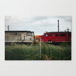Head On Canvas Print