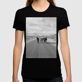 Spring Mountain Wild Horses T-shirt