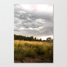 Stormy fields Canvas Print