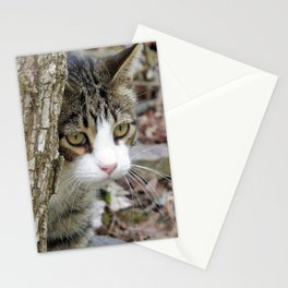 My Hunting Cat Stationery Cards