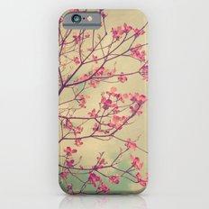 Vintage Pink Dogwood Tree in Flower iPhone 6s Slim Case