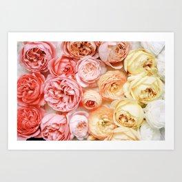 Rose Gradient Art Print