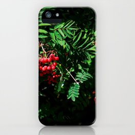 Rowan-berry iPhone Case