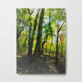 """Filtering Trees"" Metal Print"